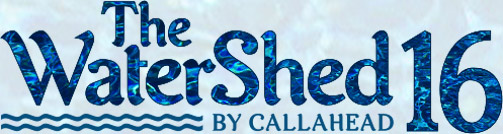 The WaterShed 16 Logo