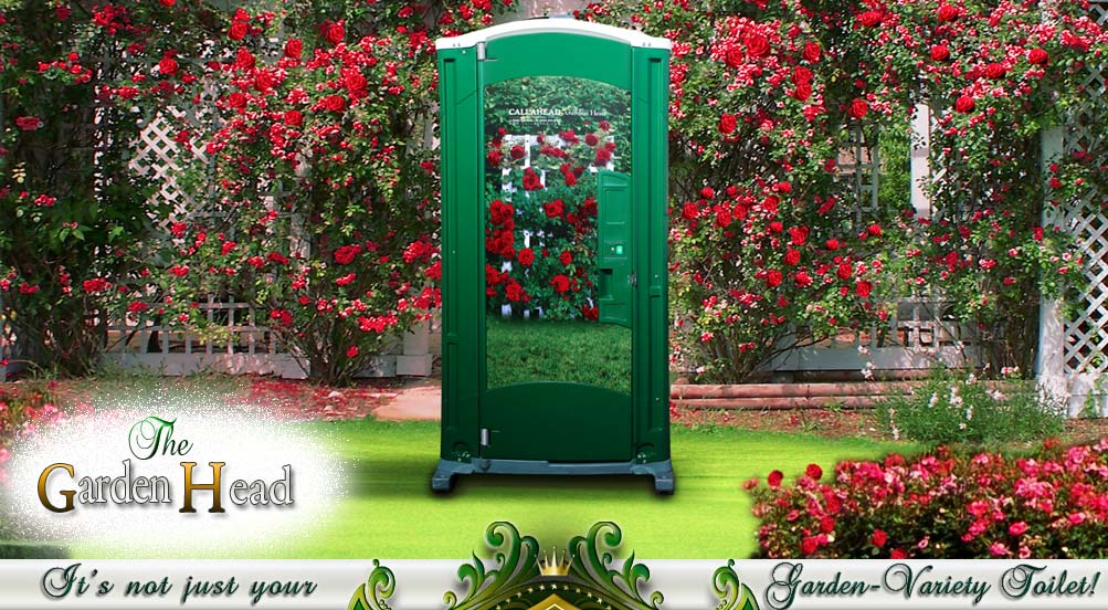 Special Events Portable Toilet for Her