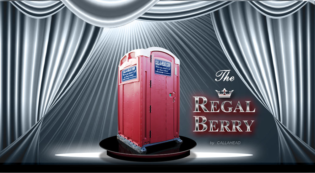 Regal Berry Portable Toilet
